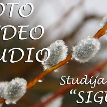 Video studija