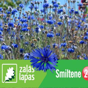 Smiltene24.lv