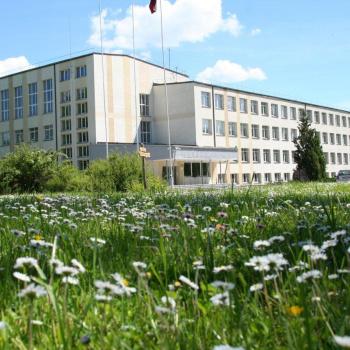 Mālpils internātpamatskola
