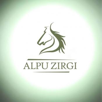 ALPU ZIRGI